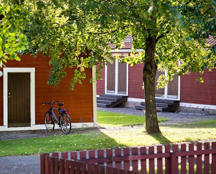 Lummigt område i Falun